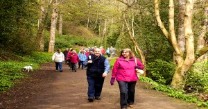 Walking Group Hawthorn Dene Galleries 4